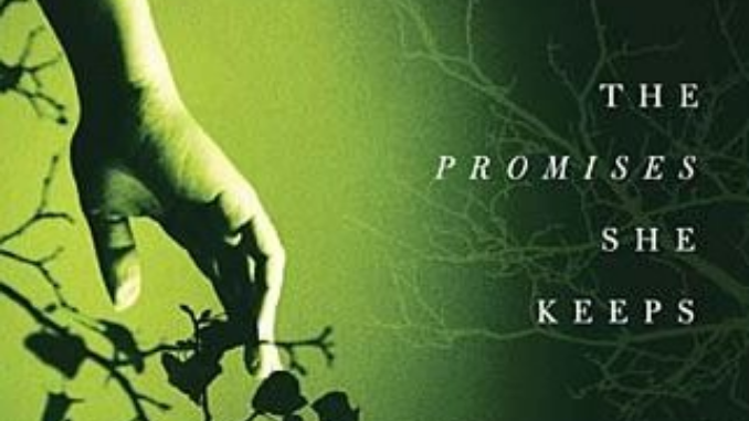 The Promises She Keeps Erin Healy