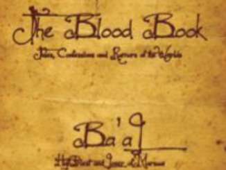 The Blood Book Ted Dekker