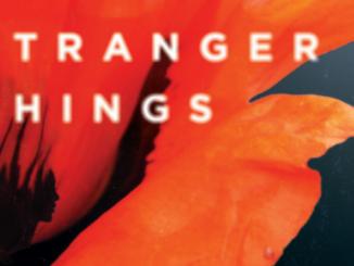 Stranger Things Erin Healy