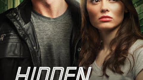 Hidden Agenda (Southern Crimes #3) – Lisa Harris