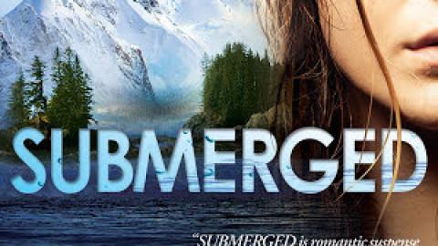 Submerged (Alaskan Courage #1) – Dana Pettrey