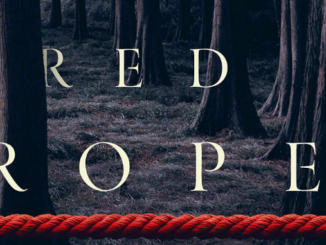 The Girl Behind the Red Rope Ted Dekker