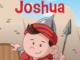 Little Bible Heroes Joshua