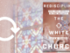 Rediscipling the White Church David Swanson