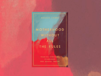 Motherhood Without all the Rules Maggie Coombs