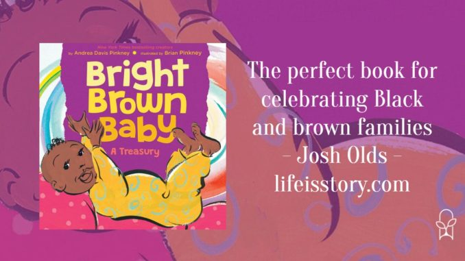 Bright Brown Baby Brian Andrea Pinkney